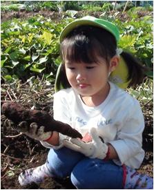 千葉ポート芋ほり06